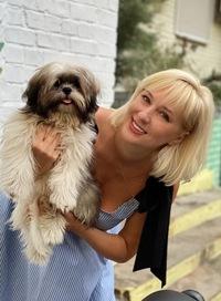 Immagine profilo di Stella